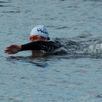 OpenWater_swimmer